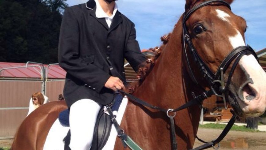 Nuestros caballos: Dantzari